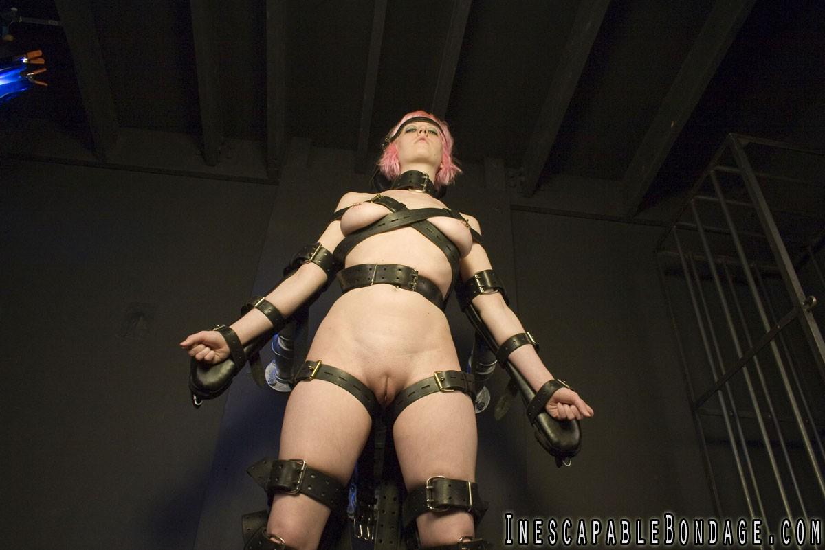 Bondage and Torture Board - Porn